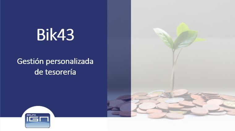 Gestión personalizada de tesorería con Bik43